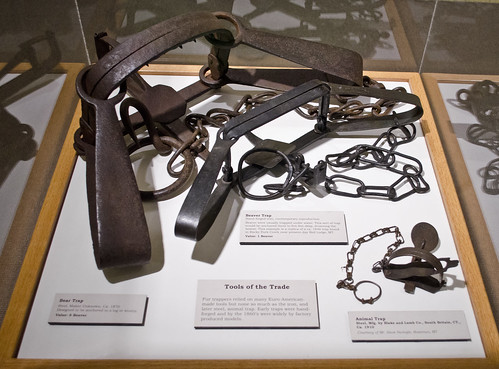 trap exhibit - Paugh Regional History Hall - Museum of the Rockies - 2013-07-08